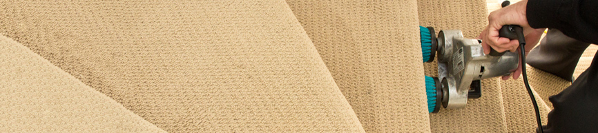 Carpet cleaning services aldonga carpet care albury wodonga for How often should you replace carpet